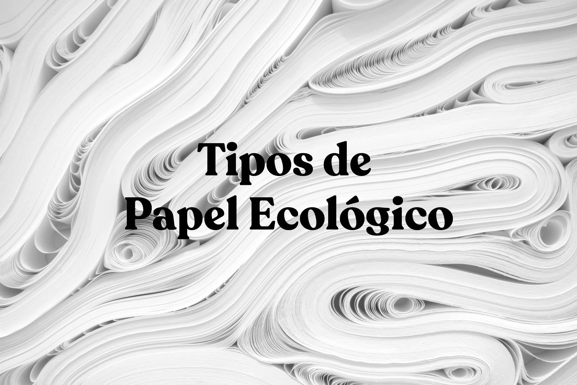Tipos de papel ecologico para imprimir. ¿Cuál es el más sostenible?